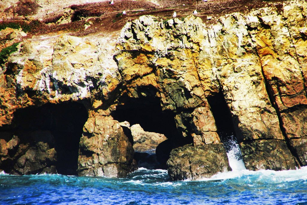 Cavity Arch