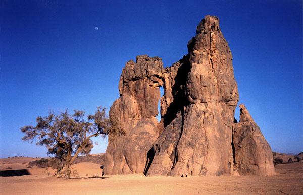 اجمل صحراء في العالم  ALG068